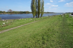 An der Elbe ... Luft holen